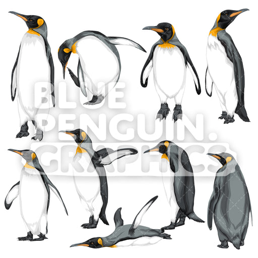 King Penguin Bundle Set Vector Clipart - Blue Penguin Graphics
