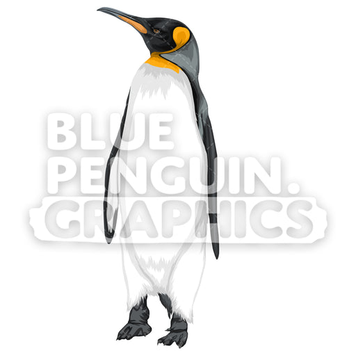King Penguin Version 1 Vector Clipart Illustration - Blue Penguin Graphics