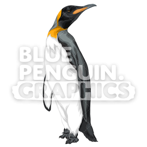 King Penguin Version 4 Vector Clipart Illustration - Blue Penguin Graphics