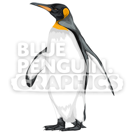 King Penguin Version 5 Vector Clipart Illustration - Blue Penguin Graphics