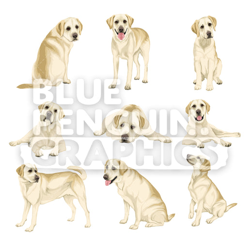 Labrador Dog Bundle Set Vector Clipart - Blue Penguin Graphics