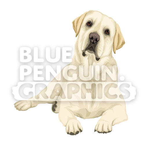 Labrador Dog version 7 Vector Cartoon Clipart Illustration - Blue Penguin Graphics