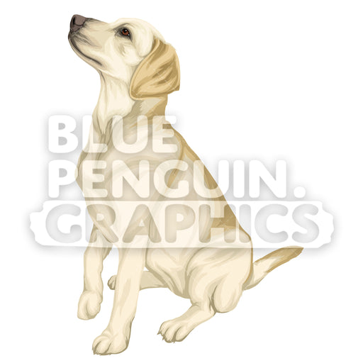 Labrador Dog version 9 Vector Cartoon Clipart Illustration - Blue Penguin Graphics