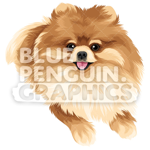 Pomeranian Version 4 Vector Clipart Illustration - Blue Penguin Graphics