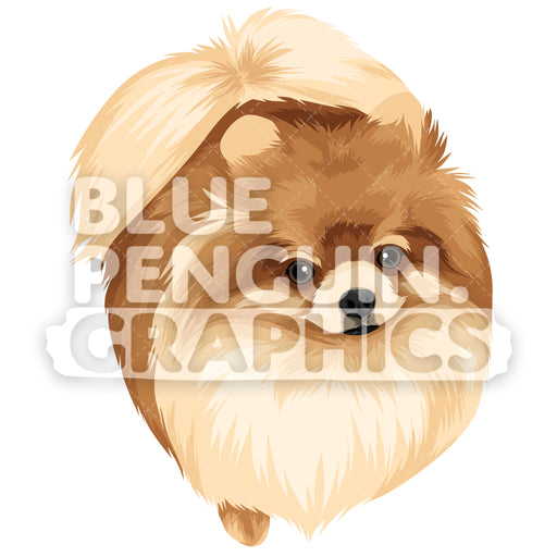Pomeranian Version 5 Vector Clipart Illustration - Blue Penguin Graphics