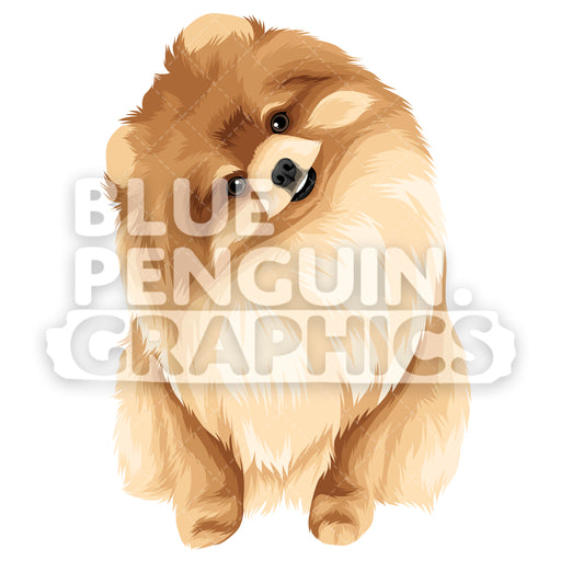 Pomeranian Version 6 Vector Clipart Illustration - Blue Penguin Graphics