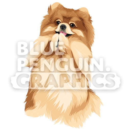 Pomeranian Version 7 Vector Clipart Illustration - Blue Penguin Graphics