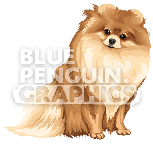 Pomeranian Version 8 Vector Clipart Illustration - Blue Penguin Graphics