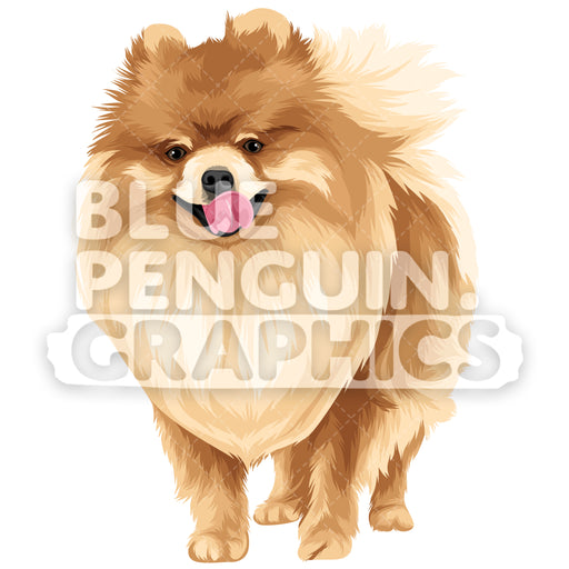 Pomeranian Version 9 Vector Clipart Illustration - Blue Penguin Graphics