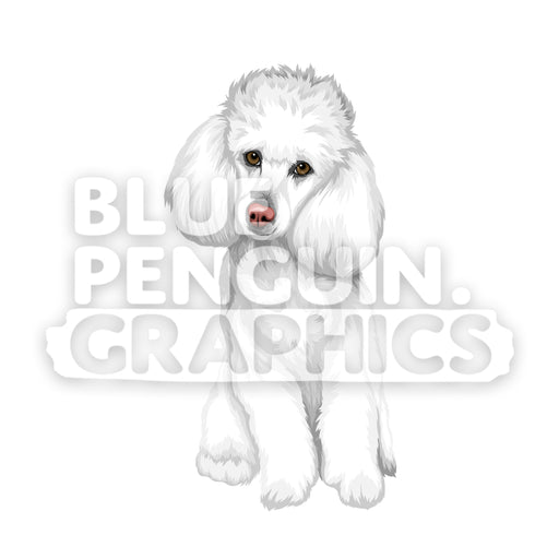 Poodle Dog version 1 Vector Clipart - Blue Penguin Graphics