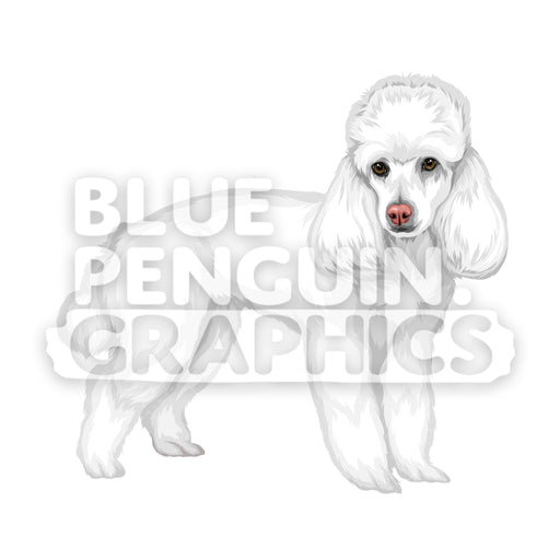 Poodle Dog version 3 Vector Cartoon Clipart Illustration - Blue Penguin Graphics