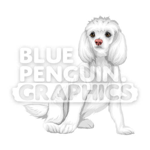 Poodle Dog version 8 Vector Cartoon Clipart Illustration - Blue Penguin Graphics