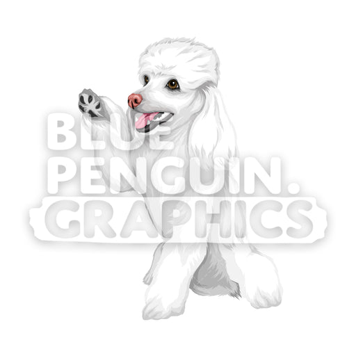 Poodle Dog version 9 Vector Cartoon Clipart Illustration - Blue Penguin Graphics