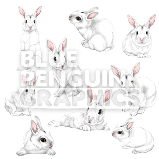 Rabbit Bundle Set Vector Clipart - Blue Penguin Graphics