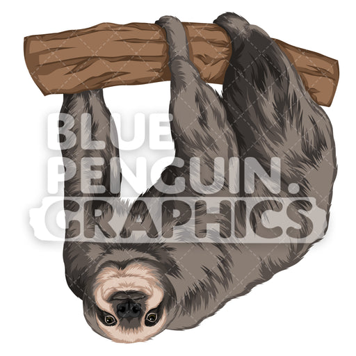 Sloth Version 6 Vector Clipart Illustration - Blue Penguin Graphics