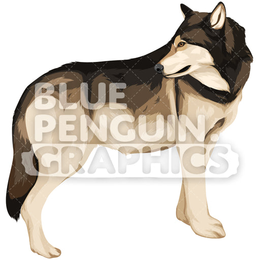 Wolf Version 3 Vector Clipart Illustration - Blue Penguin Graphics