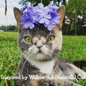 My Paper Pet Pouchpad: Willow the Beautiful Cat