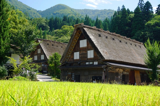 Takayama-Hokuriku Area Tourist Pass, great deal for those who want to visit both Kyoto and Takayama