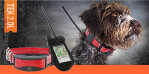 SportDOG TEK 2.0L Series GPS Tracking System, Field Ready