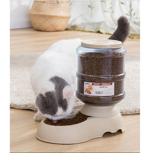 Pet Drinking Water / Automatic Feeding Feeder