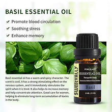 Load image into Gallery viewer, Basil Essential Oil 100% Natural Plant Therapeutic Grade Fragrance Essential Oil - 10ml