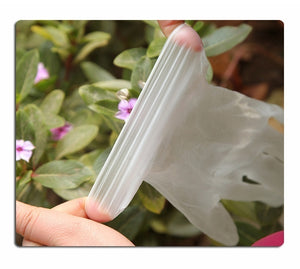 High Quality 100PCS Disposable Pvc Rubber Powder-free Transparent Gloves Thickened