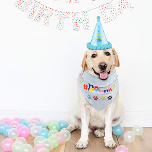 Dog Happy Birthday Bandana Scarfs and Cute Party Hat