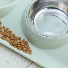Load image into Gallery viewer, Pet Stainless Steel Feeder Double Bowl