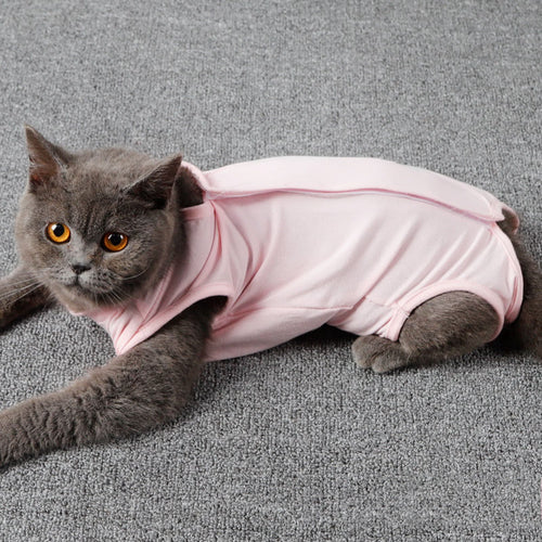Cat Recovery Suit for Abdominal Wounds or Skin Diseases