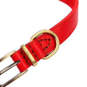 Padded Leather Classic Pet Dog Training Collars