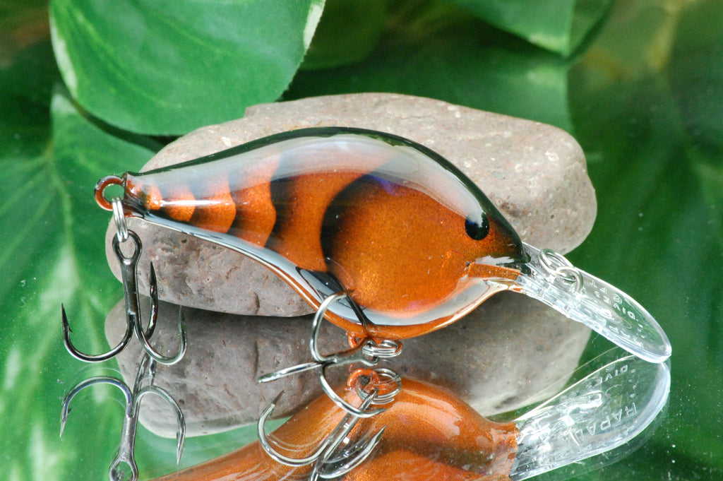 Kandy Orange Craw