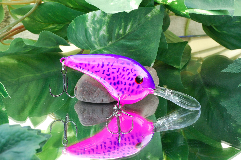 Pink Crappie