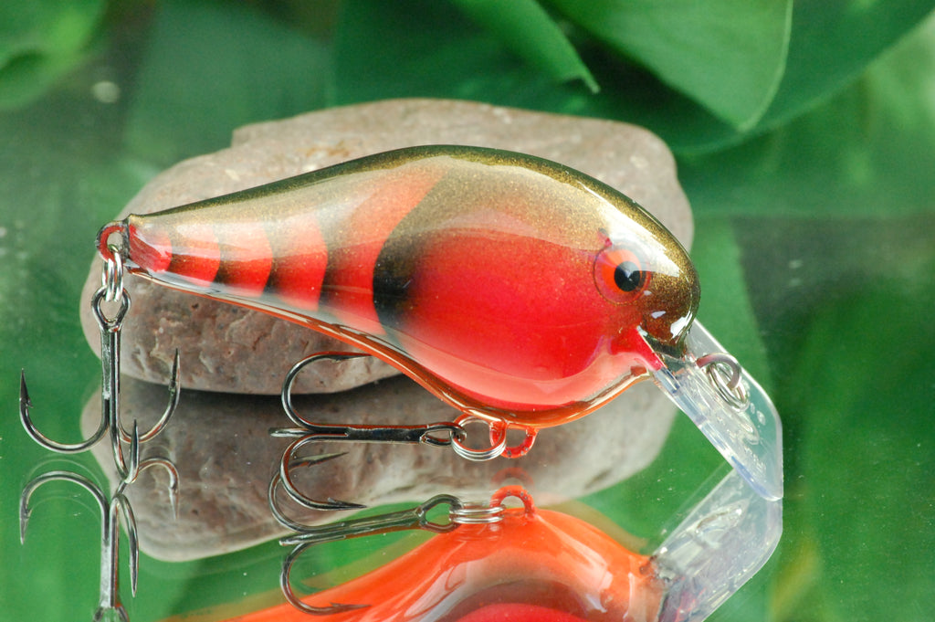 Orange Texas Craw