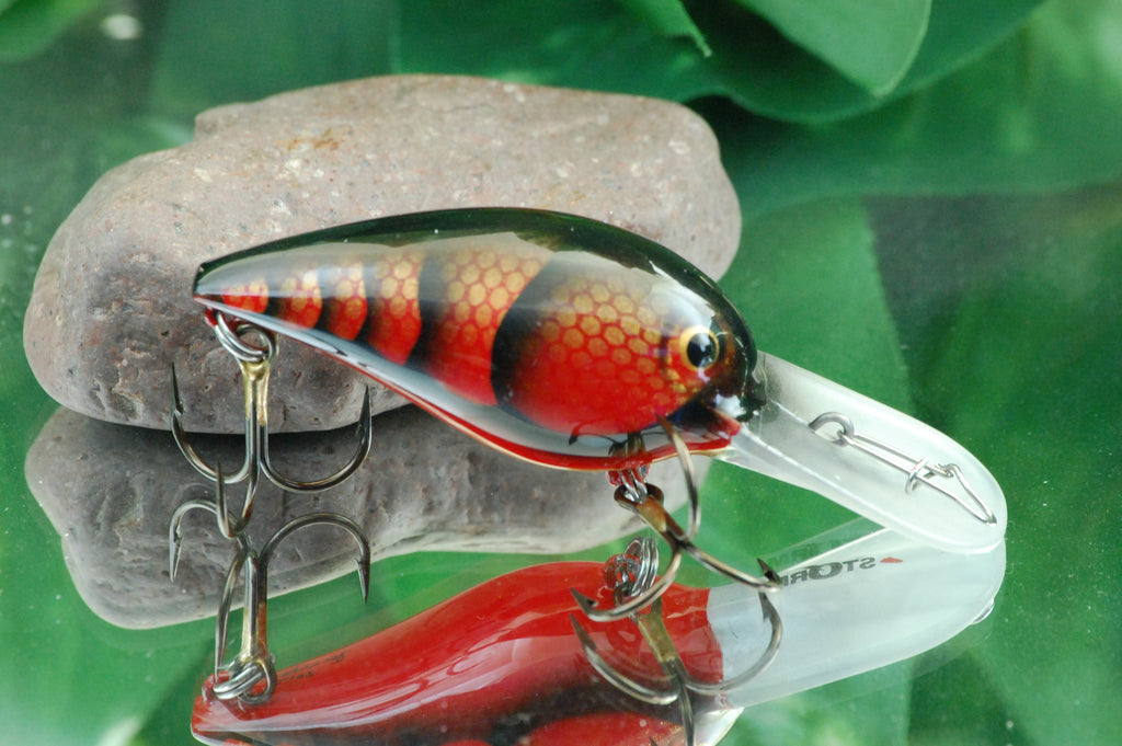 Red Scaled Craw