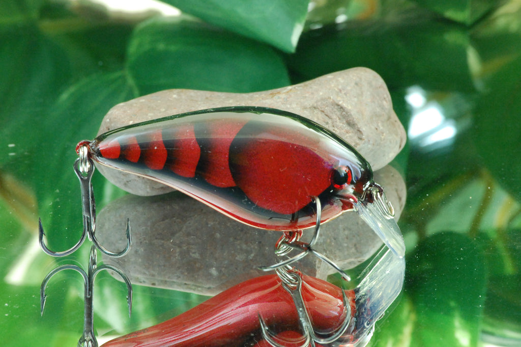 Kandy Red Craw