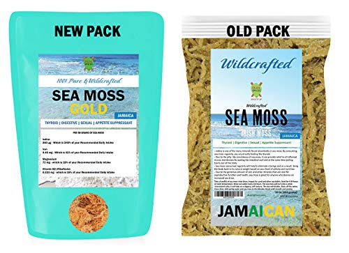 DualSpices Irish Sea Moss Gold, 16 Oz, 100% Wildcrafted Wild Sea Harvested NO Chemicals Or Preservatives, Harvested from The Protected Carribean Sea Directly from Jamaica - Non-GMO, Vegan, Superfood