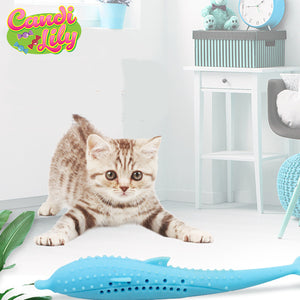 Interactive Cat Dental Toy
