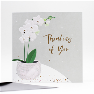 *NEW*-Thinking of You High Quality Card.