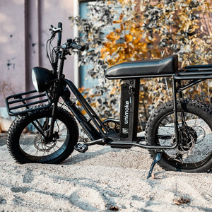 UNI Swing cargo e bike berlin