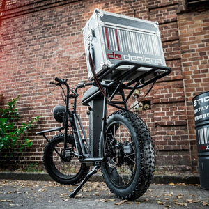 UNI Swing cargo e bike