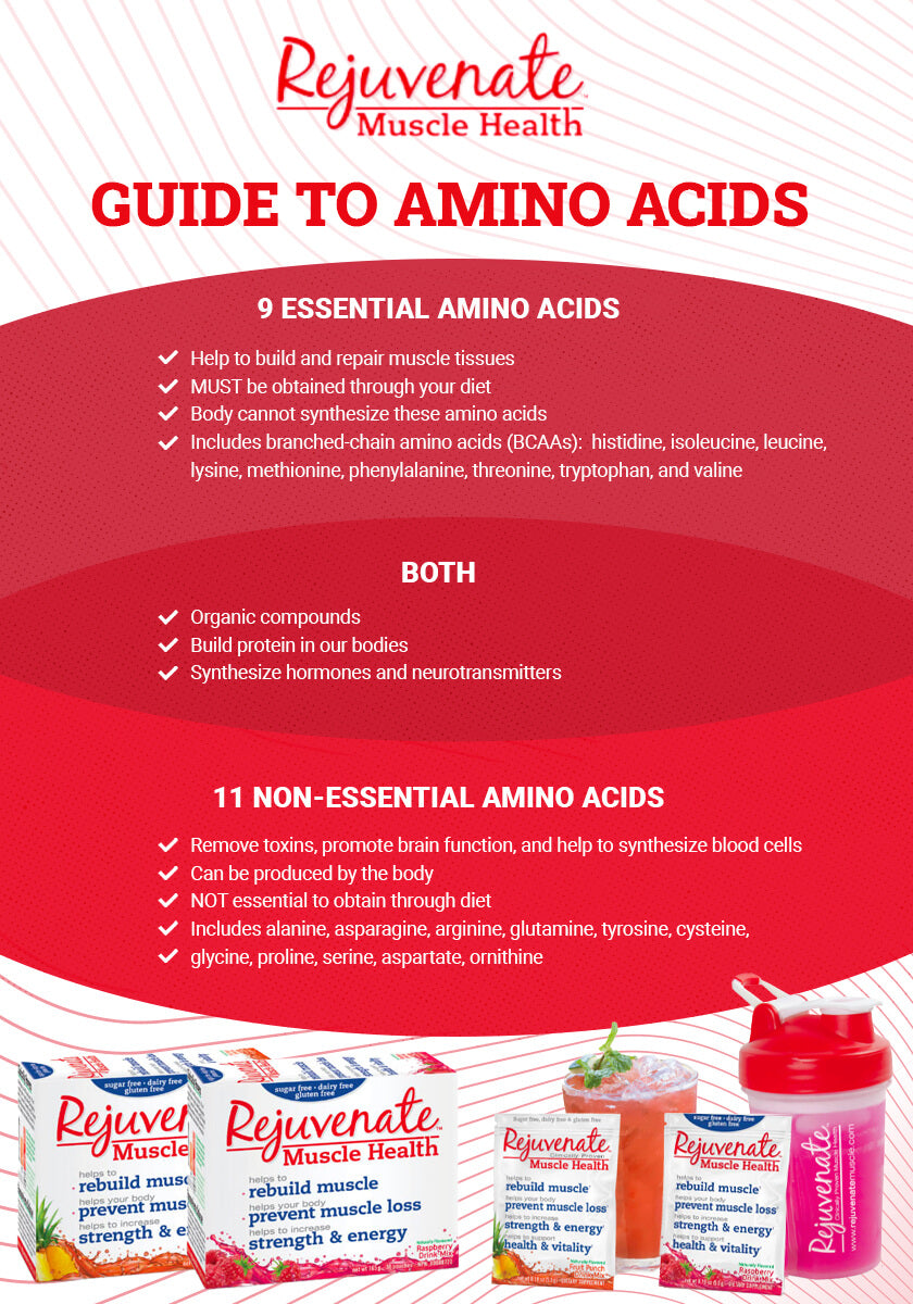 Infographic of Essential Vs Non-Essential Amino Acids - Help Guide