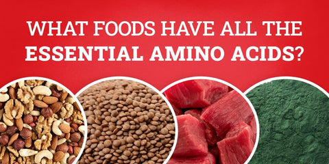 Foods with all essential amino acids