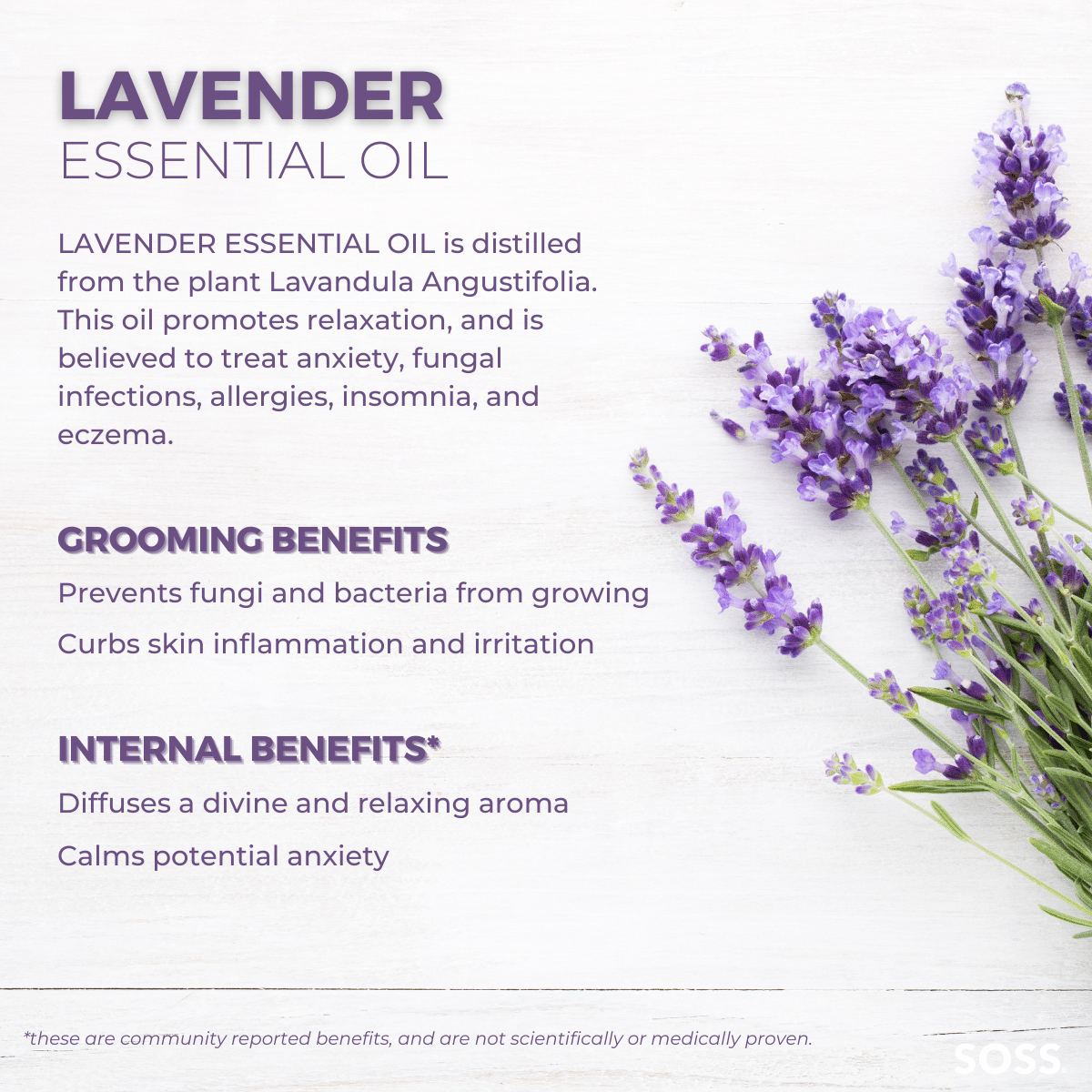 Lavender Essential Oil unites antifungal properties alongside anxiety and eczema-fighting components.