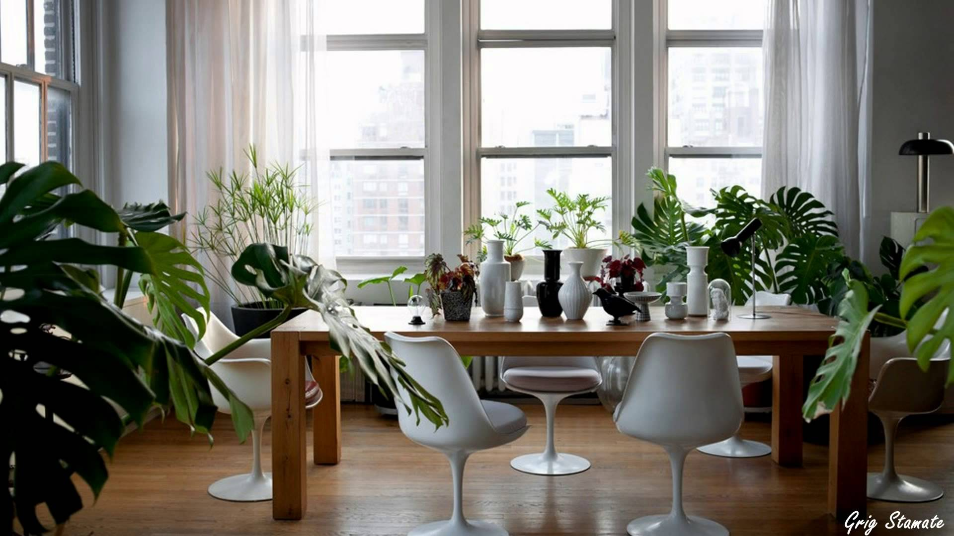 Interesting Ways To Decorate Your Home With Indoor Plants Rugler