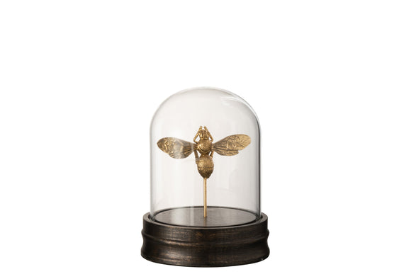Cloche Abeille Resine/Verre Or Bell Jar Bee Glass Gold