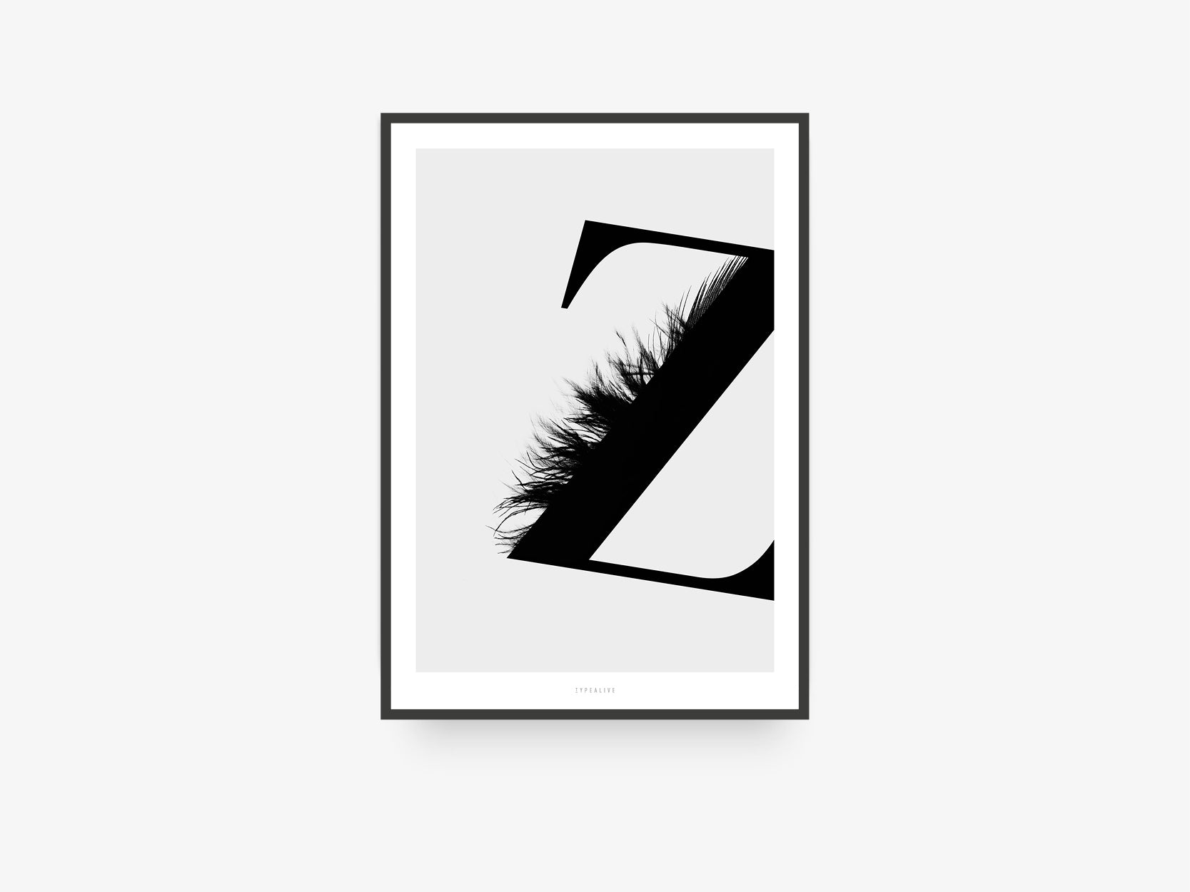 Print / ABC Flying Letters - Z