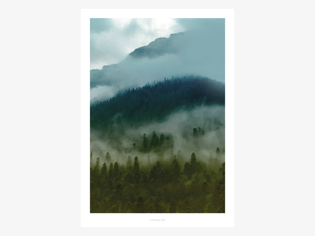 Print / A Quiet Place No. 5