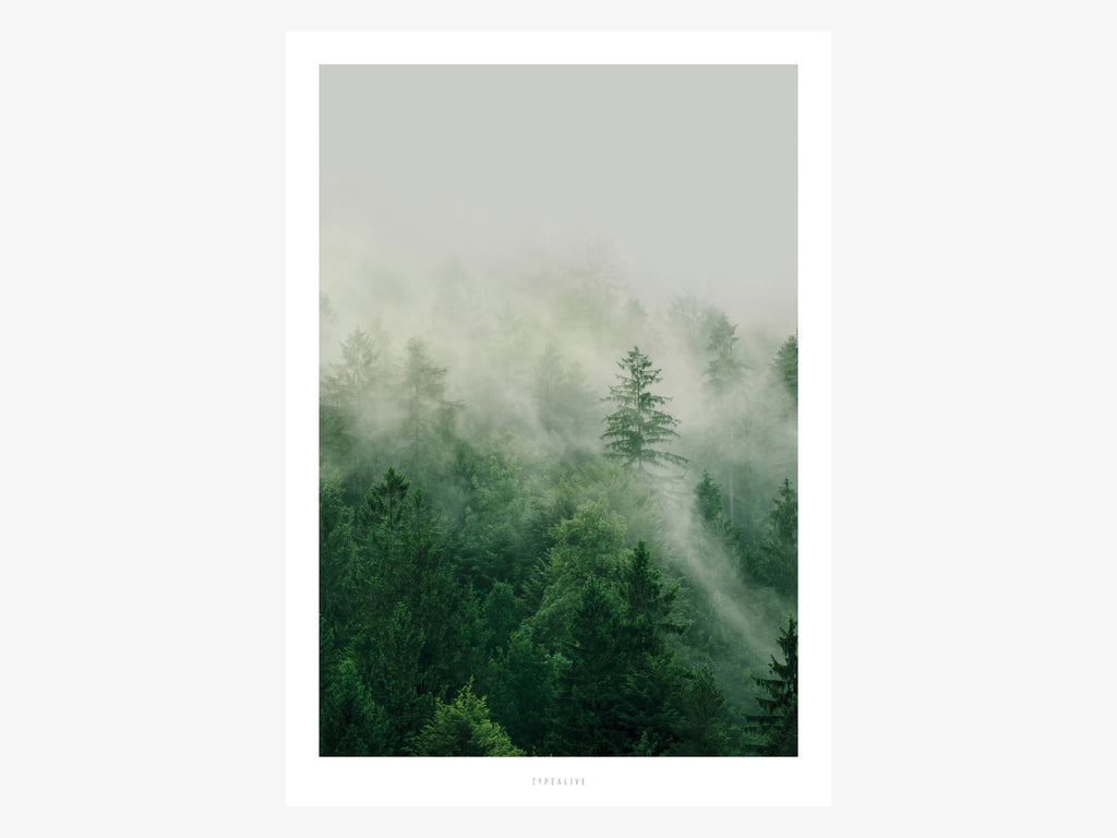 Print / A Quiet Place No. 7