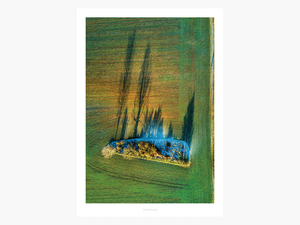Print / Above The Fields No. 2
