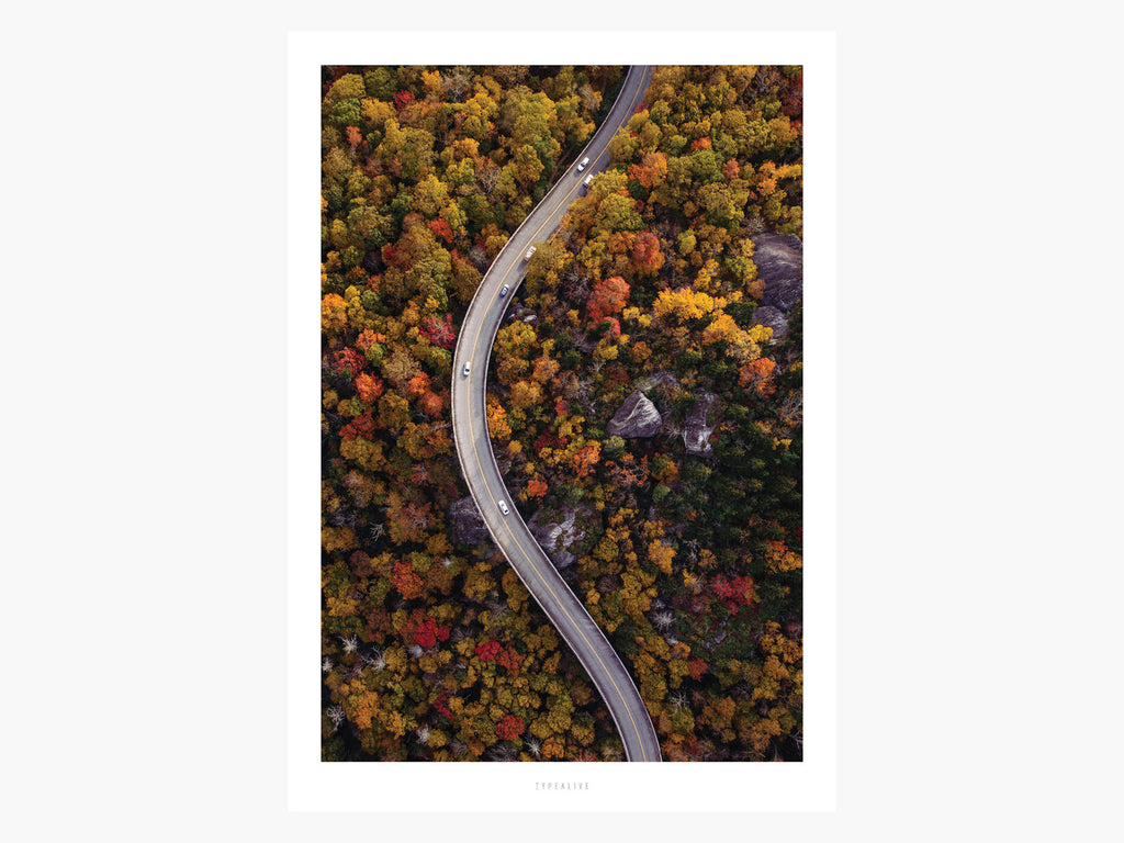 Print / Above The Roads No. 4